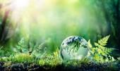 """Постер, картина, фотообои """"Глобус на мох в лесу - экологической концепции"""""""
