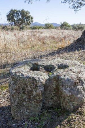 Pod koniec rzymskiego tłocznia oliwy przeciwwaga