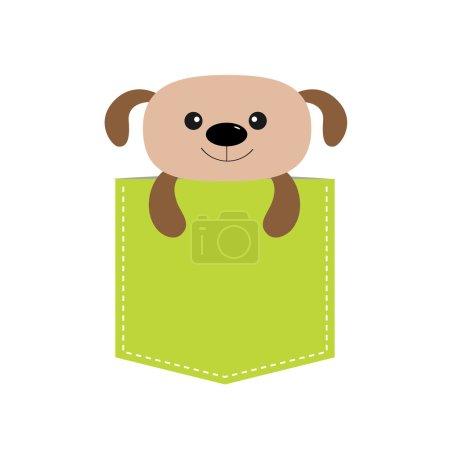 cute Dog in pocket