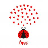 Red ladybug insect with hearts on White background