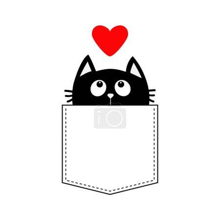 Black cat in the pocket