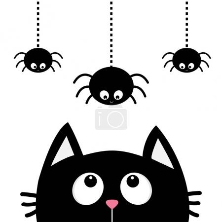 Black cat looking up to spiders