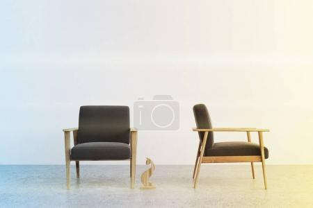Two gray armchairs in a room toned