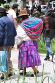 Woman in Traditional Dress Walking in La Paz, Bolivia