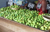 Limes at Outdoor Market in Peru