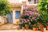 Picturesque Greek courtyards, sights of the city.
