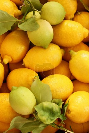 Photo for Group of fresh lemons with  leaves - Royalty Free Image