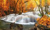 Beautiful  Pha Tat Waterfall
