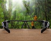 rain forest focused in glasses lenses