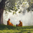 Two monks meditation under the trees with sun ray,...