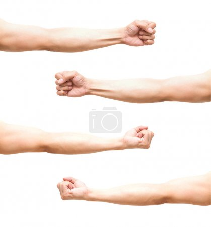 Set of Human Hands Clenched Fists
