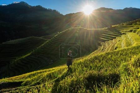 Photo for Undefined Vietnamese Hmong child are walking in rice terrace when the sunset time with lens flare at mam xoi of mu cang chai district,Yenbai province, northwest of Vietnam. - Royalty Free Image