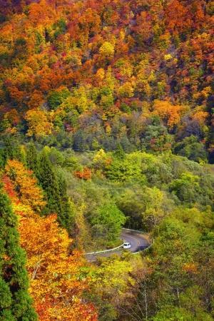 Photo pour Scène de paysage de la vue de dessus de la saison d'automne avec voiture sur la route dans tohoku, Japon, paysage et concept de transport - image libre de droit