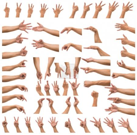 Photo for Various gesture of  hands over white background, include clipping path - Royalty Free Image