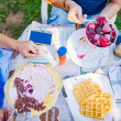 People making a picnic with sweet waffle and panca...