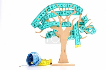 Rolls of measuring tapes near decorative wooden tree