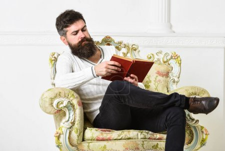 Photo for Man with beard and mustache sits on armchair and reading book, white wall background. Knowledge concept. Macho smart spends leisure with book. Scientist, professor on serious face explores literature. - Royalty Free Image