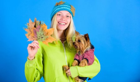 Woman carry yorkshire terrier. Take care pet autumn. Veterinary medicine concept. Health care for dog pet. regular flea treatment. Pet health tips for autumn. Girl hug cute dog and hold fallen leaves