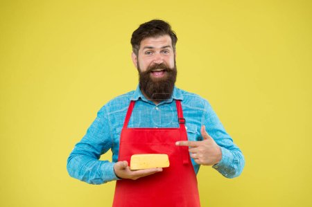 Photo pour Reasonable price and good quality. cheesemaking techniques. cheese maker. hipster with beard in chef apron. Dairy food shop. Online shopping. Gourmet product. happy bearded man hold cheese. - image libre de droit