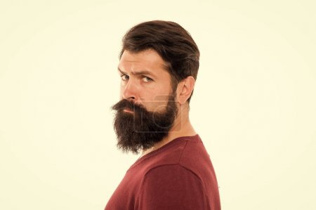 Photo pour Pour faire pousser une barbe impressionnante, rangez simplement votre rasoir et votre tondeuse et attendez. Simplement nécessaire de ne pas se raser. Les poils de barbe poussent à des rythmes différents. Homme à longue barbe et moustache isolé fond blanc . - image libre de droit