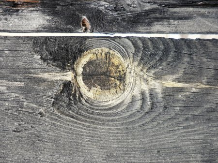 Photo pour Vieux fond de texture de planche de bois. Texture bois délavé - image libre de droit
