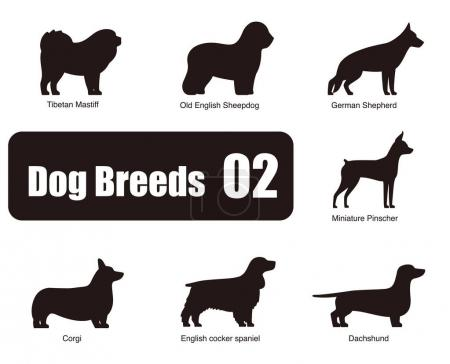Dog breeds, standing on the ground, side,silhouette,vector