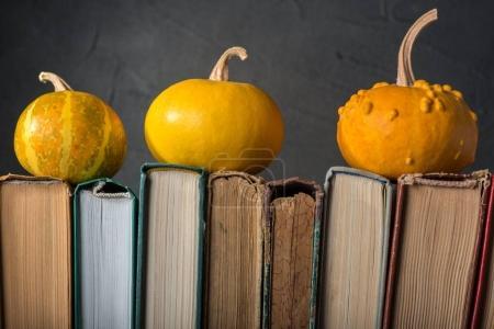 orange Pumpkins on books
