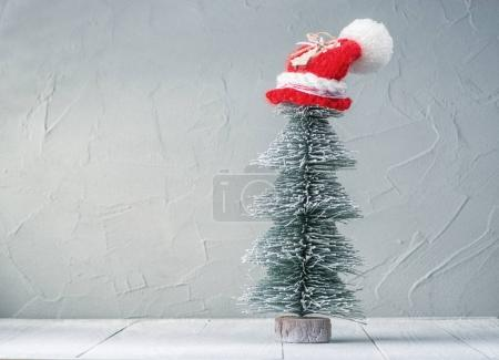 Christmas tree in a hat