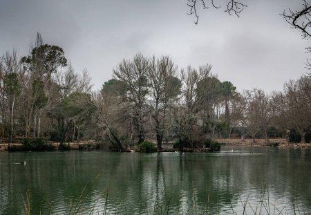Lagoon of Albufera de Anna. Valencia. Spain...