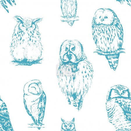 Illustration for Different owls collectio, vector - Royalty Free Image