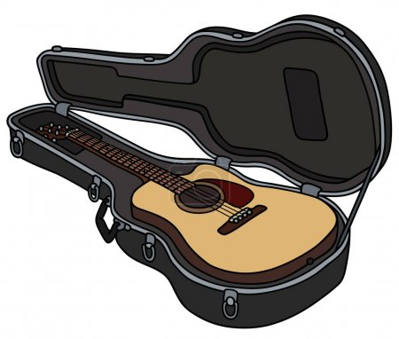 The guitar in a hard case