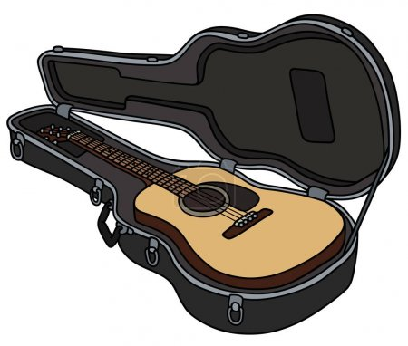 The accoustic guitar in a hard case