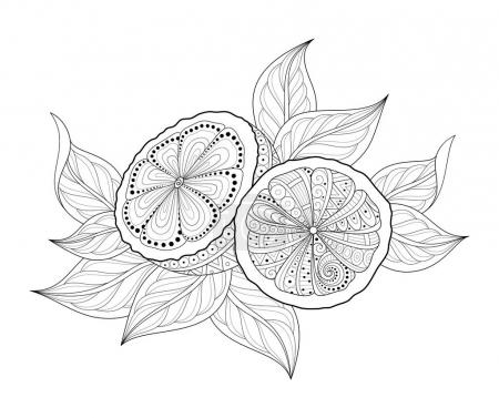 Composition with Ornate Lemons and Leaves