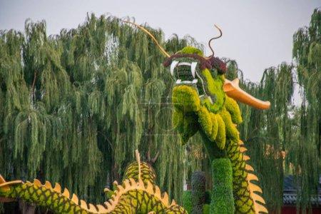 Photo pour Vue de dragon figure faite d'herbe et de fleurs - image libre de droit