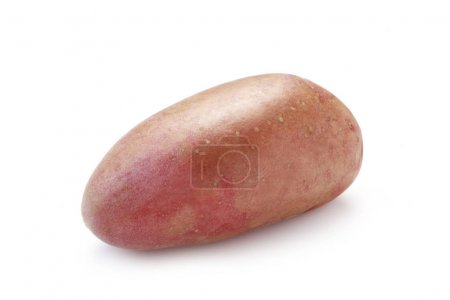 Photo for Close-up shot of Red Potato Isolated On White - Royalty Free Image