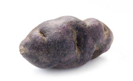 Photo for Close-up shot of Vitelotte Potato Isolated On White - Royalty Free Image
