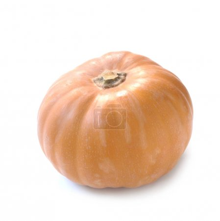 Photo for Close-up shot of Muscat Pumpkin Isolated On White - Royalty Free Image