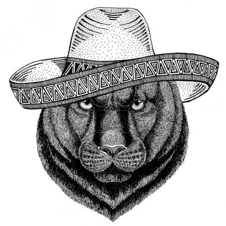 Пантера Пума Пума дикое животное