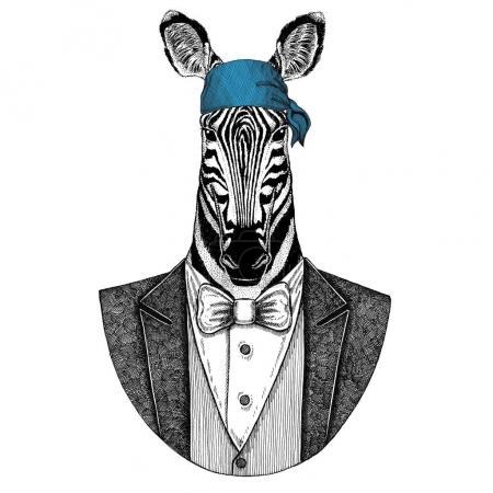 Photo pour Motard sauvage, animal pirate portant bandana Image dessinée à la main pour tatouage, emblème, insigne, logo, patch - image libre de droit