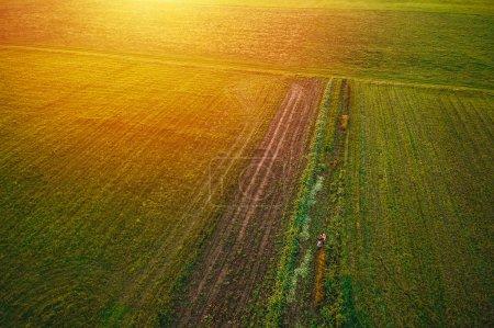 Feld von oben mit einer Drohne eingefangen. Luftaufnahme des ländlichen Raums