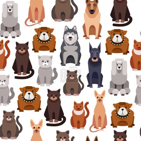 cute cat and dogs