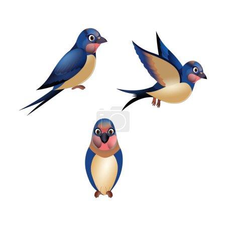 Illustration pour Hirondelle rustique Oiseau - Image vectorielle - image libre de droit
