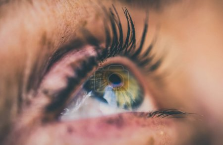 Photo for Eye macro. Side view of blue female eyes - Royalty Free Image