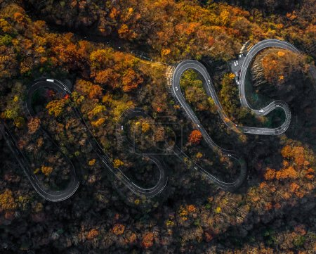 Nikko 's winding road in autumn, Japan