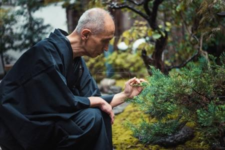 Senior japanese man taking care of his garden