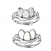 Hand drawn vector illustration Happy Easter Spring nest with bird eggs