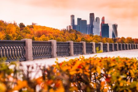 Moscow Autumn with golden foliage and views of the skyscrapers o