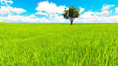 Tree field of grass and perfect sky landscape 3D rendering