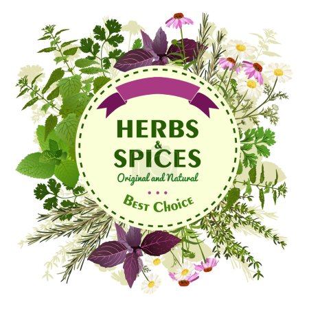 Illustration for Organic emblem with herbs and spices and title on round background with ribbon vector illustration - Royalty Free Image