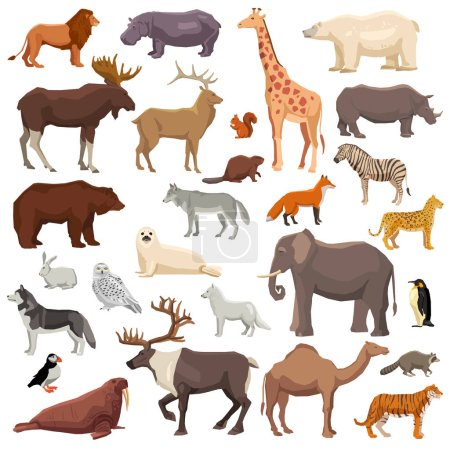 Big flat set of wild animals and birds living in v...